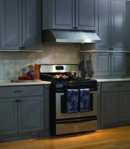 Under Cabinet Hood with Straight Professional Lip Size